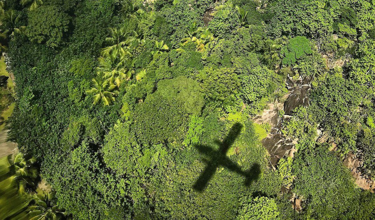¿Existe el avión ecológico?