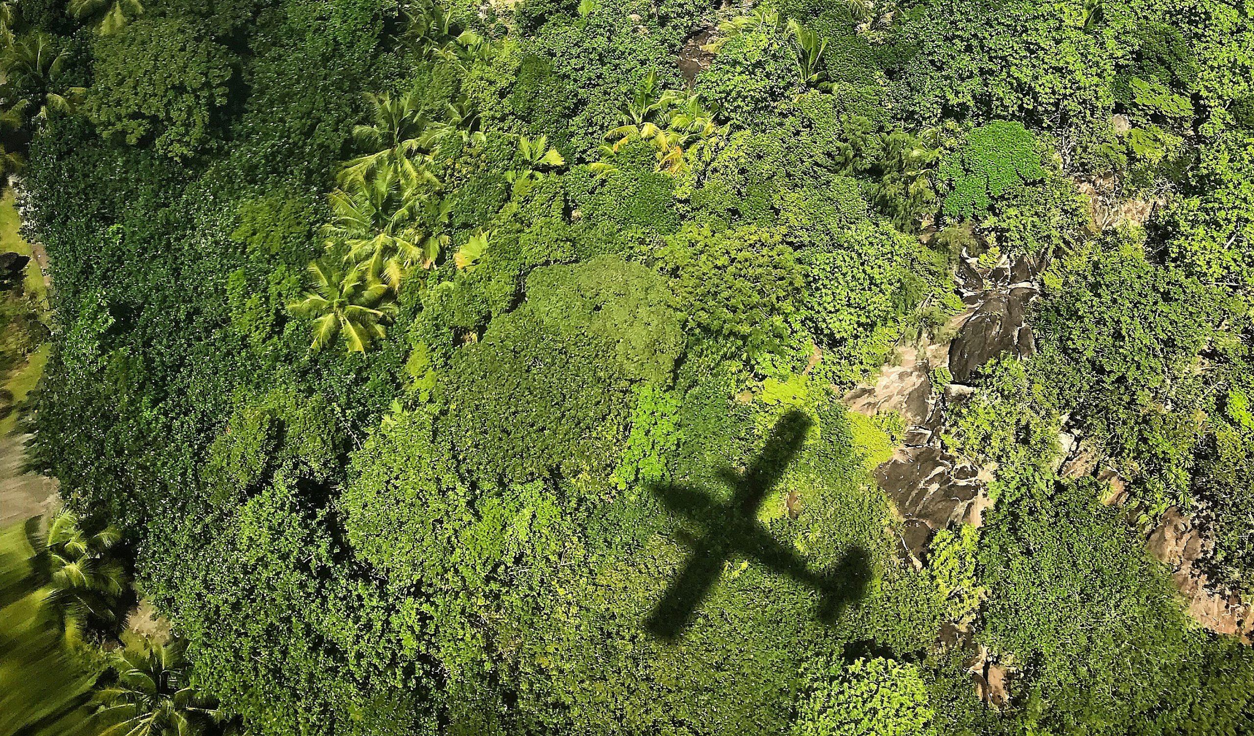 avión ecológico